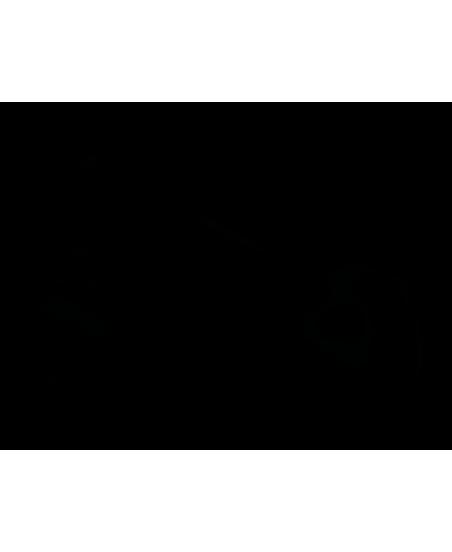 Умные Гантели Xiaomi Move It Beat 0.5 Кг